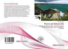 Portada del libro de Pierre de Rohan-Gié