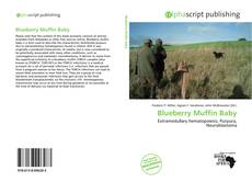 Bookcover of Blueberry Muffin Baby