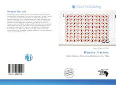 Bookcover of Bumper Fracture