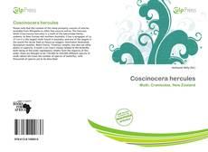 Обложка Coscinocera hercules