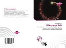 Bookcover of 11 Camelopardalis