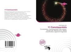 11 Camelopardalis kitap kapağı