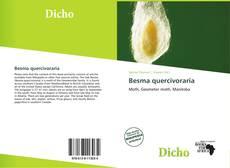 Buchcover von Besma quercivoraria