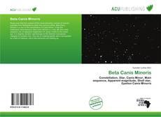Bookcover of Beta Canis Minoris