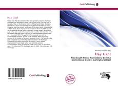 Bookcover of Hay Gaol