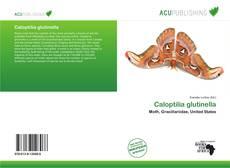 Bookcover of Caloptilia glutinella