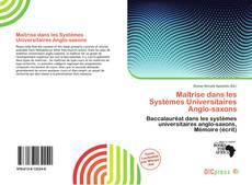 Copertina di Maîtrise dans les Systèmes Universitaires Anglo-saxons
