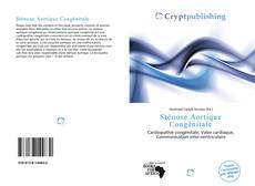 Bookcover of Sténose Aortique Congénitale