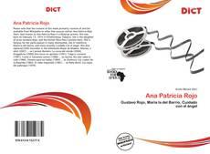 Bookcover of Ana Patricia Rojo