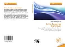 Bookcover of Julio Terrazas Sandoval
