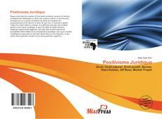 Bookcover of Positivisme Juridique