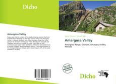 Capa do livro de Amargosa Valley