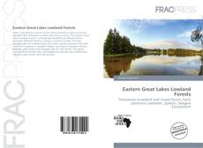 Обложка Eastern Great Lakes Lowland Forests