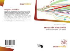 Dioryctria albovittella的封面