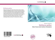 Bookcover of Hellinsia pollux