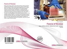 Обложка Fascia of Scarpa