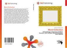 Bookcover of Menil Collection