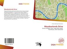 Bookcover of Meadowlands Drive
