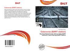 Buchcover von Calaveras (BART station)
