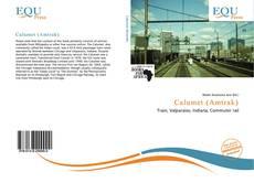 Bookcover of Calumet (Amtrak)