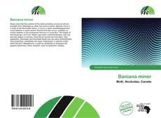 Bookcover of Baniana minor