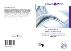 Bookcover of Italian Radicals