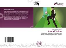 Bookcover of Gabriel Tudose