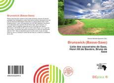 Capa do livro de Brunswick (Basse-Saxe)