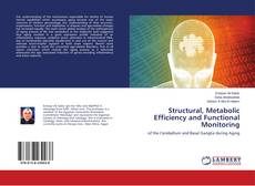 Buchcover von Structural, Metabolic Efficiency and Functional Monitoring
