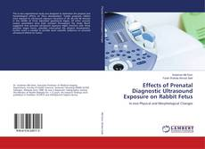 Bookcover of Effects of Prenatal Diagnostic Ultrasound Exposure on Rabbit Fetus