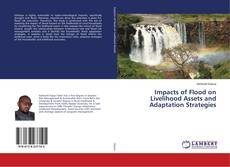 Bookcover of Impacts of Flood on Livelihood Assets and Adaptation Strategies