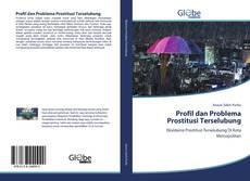 Bookcover of Profil dan Problema Prostitusi Terselubung