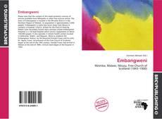 Обложка Embangweni