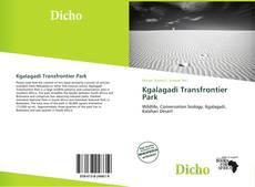 Kgalagadi Transfrontier Park kitap kapağı