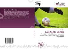 Bookcover of Juan Carlos Mandiá