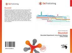 Bookcover of Boundiali