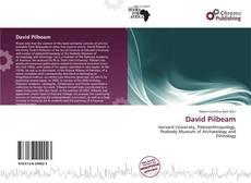 Bookcover of David Pilbeam