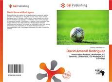 Bookcover of David Amaral Rodríguez
