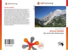 Ammer Saddle kitap kapağı
