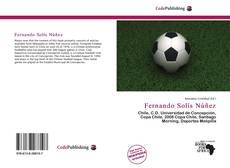 Bookcover of Fernando Solís Núñez
