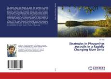 Strategies in Phragmites australis in a Rapidly Changing River Delta kitap kapağı