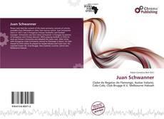 Bookcover of Juan Schwanner