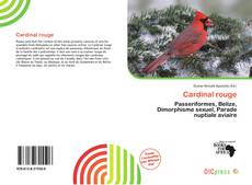 Portada del libro de Cardinal rouge