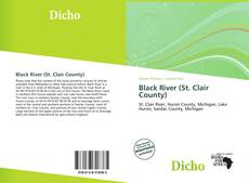Bookcover of Black River (St. Clair County)