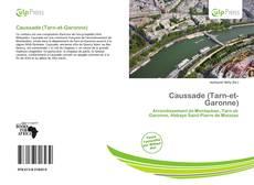 Buchcover von Caussade (Tarn-et-Garonne)