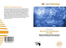 Bookcover of Black River (Cheboygan County)