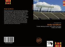 Capa do livro de Andy Sandham
