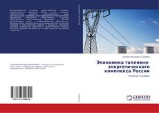 Экономика топливно-энергетического комплекса России kitap kapağı