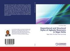 Depositional and Structural Styles of Agbada Reservoirs in Niger Delta的封面