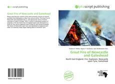 Portada del libro de Great Fire of Newcastle and Gateshead